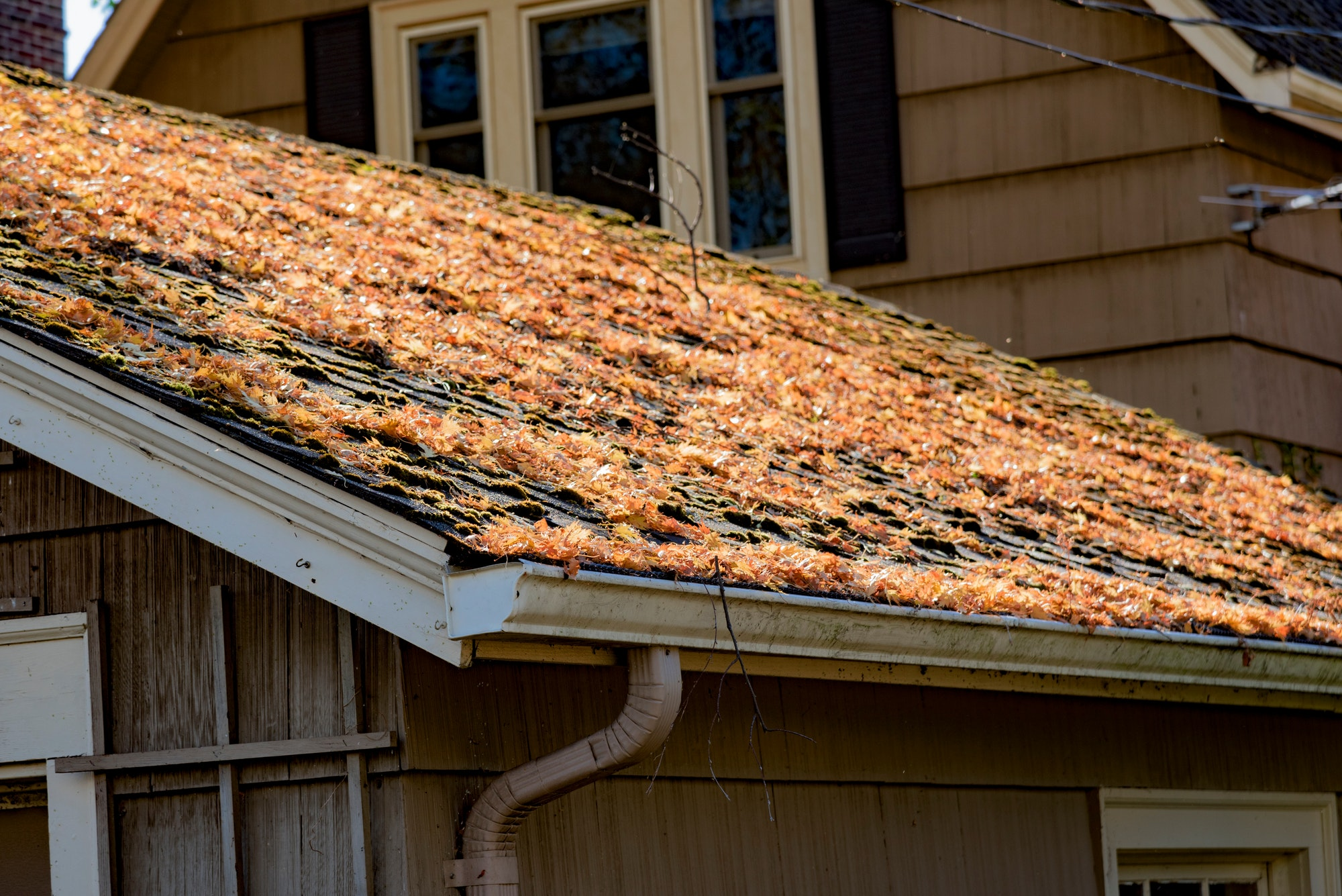 6 Incentives For Operating On Your Roof During The Fall